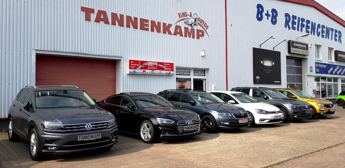 Foto von Tannenkamp