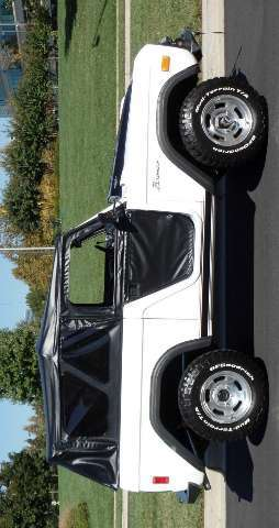 Ford Bronco V8 Custom