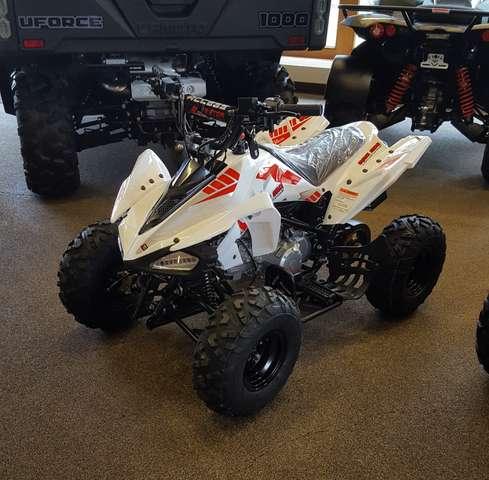 access other mini-sport-110-ccm-6-ps-mini-quad-7-zoll-neu-2021 weiss