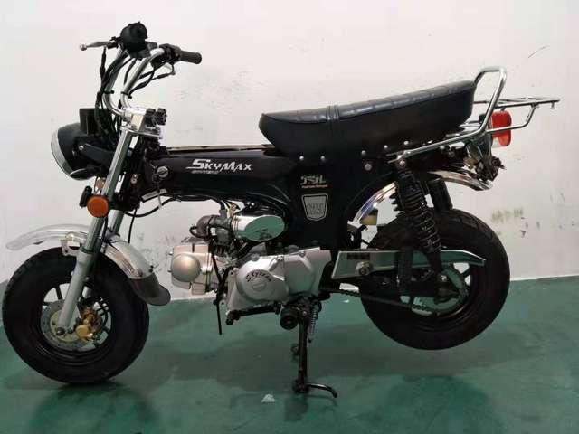 skyteam skymax dax-125cc-euro-4-mit-elektronischem-vergaser schwarz